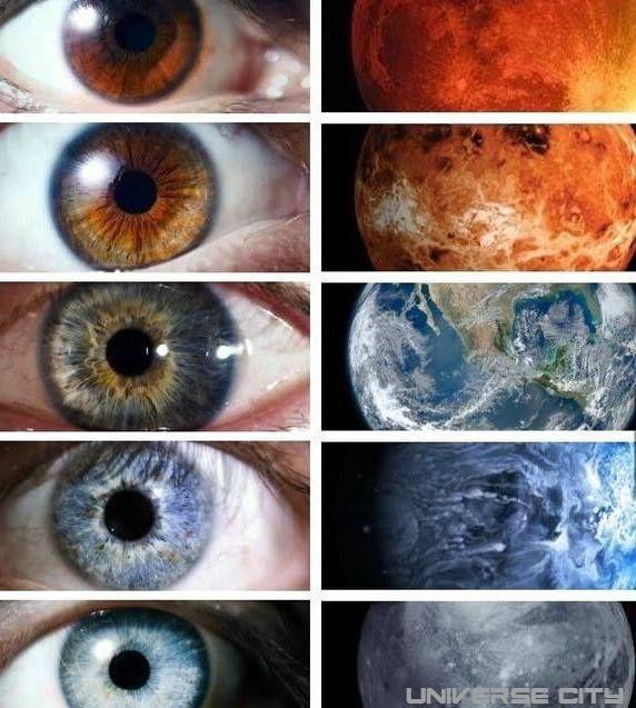 """""""A través de nuestros ojos, el universo se percibe a sí mismo.  A través de nuestros oídos, el universo está escuchando sus armonías.  Somos los testigos a través de los cuales el universo se vuelve consciente de su gloria, de su magnificencia.""""  ~Alan Watts"""