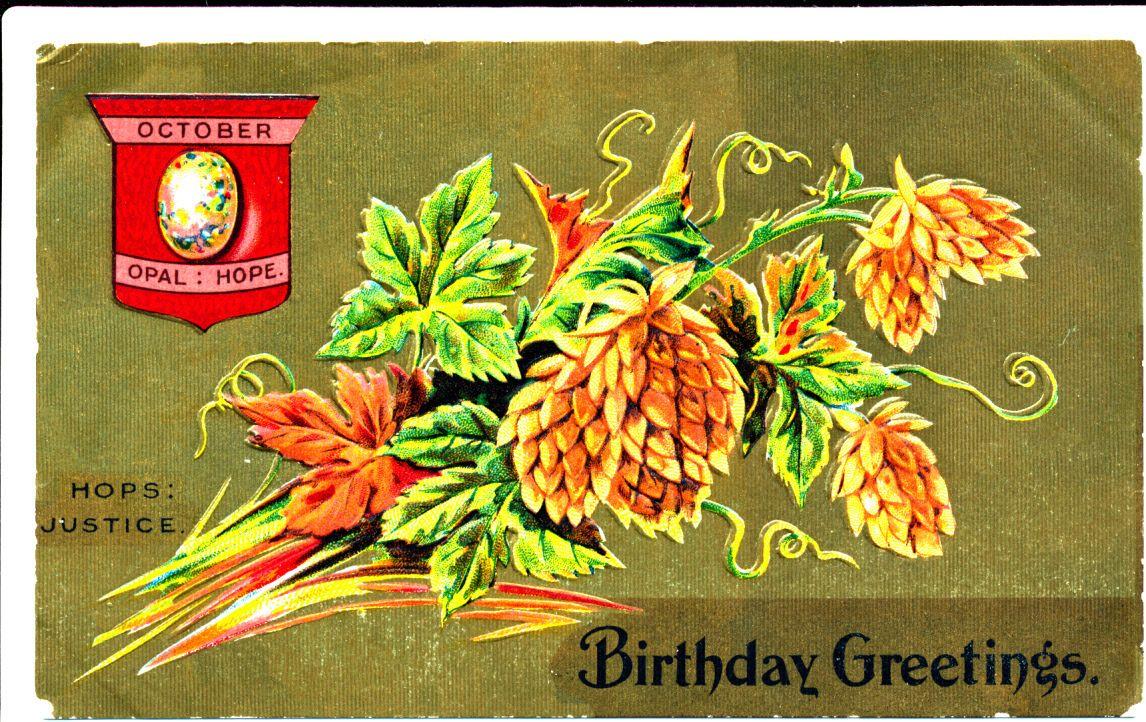 October Month Pinecones Birthday Greetings 1909 eBay