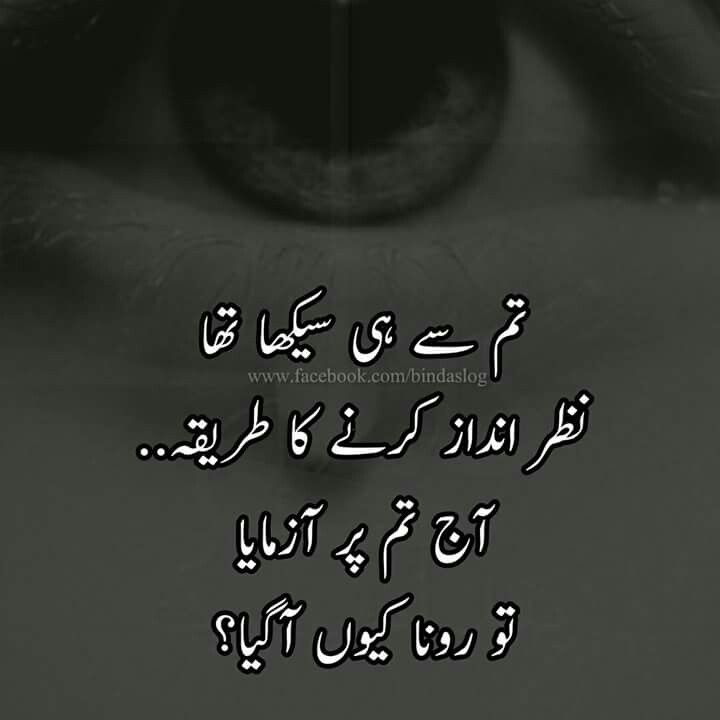 Funny Poetry Quotes In Urdu: Pin By Soomal Zulfiqar On Urdu