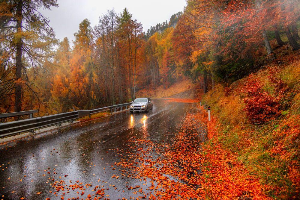 Wallpaper Hd Autumn Rainy Road Photographer Eduard Gordeev Wallpaper Pejzazhi Osennij Pejzazh Zhivopisnye Pejzazhi