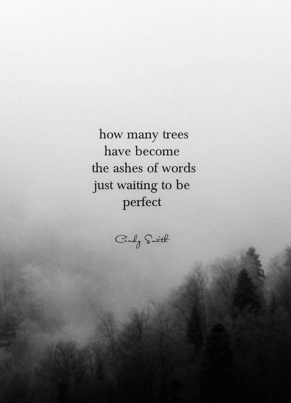 tanka perfect cindy smith  poetic quote tanka poem words