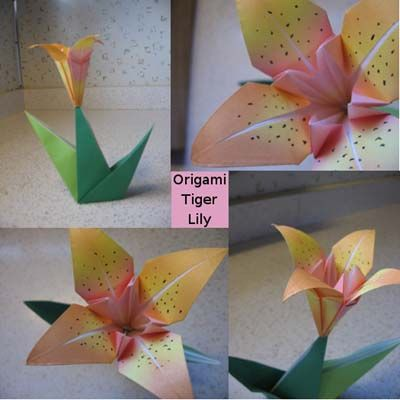 Httporigami Instructionsorigami Lily With Stemml