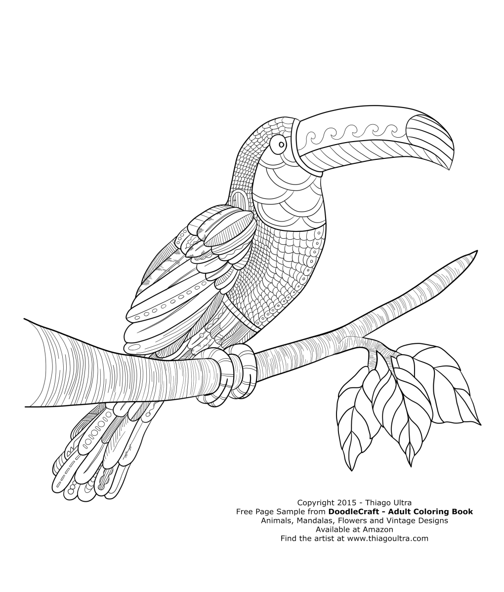 toucan  free page sample  doodlecraft adult coloring