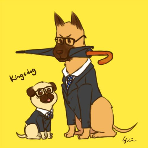 I went to see Kingsman today.It's an amazing moive!!!!Just wanna draw dogs =P