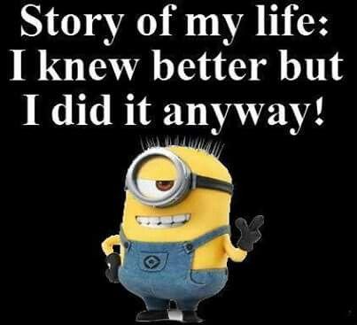 Making Memories Funny Minion Quotes Minions Funny Funny Minion Memes
