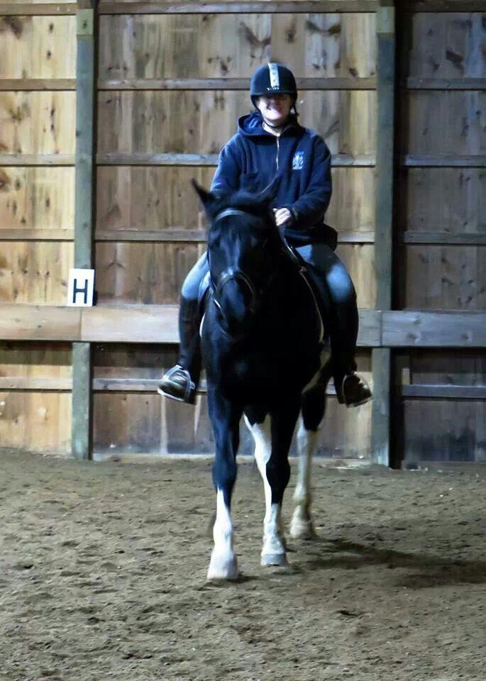My million dollar pony