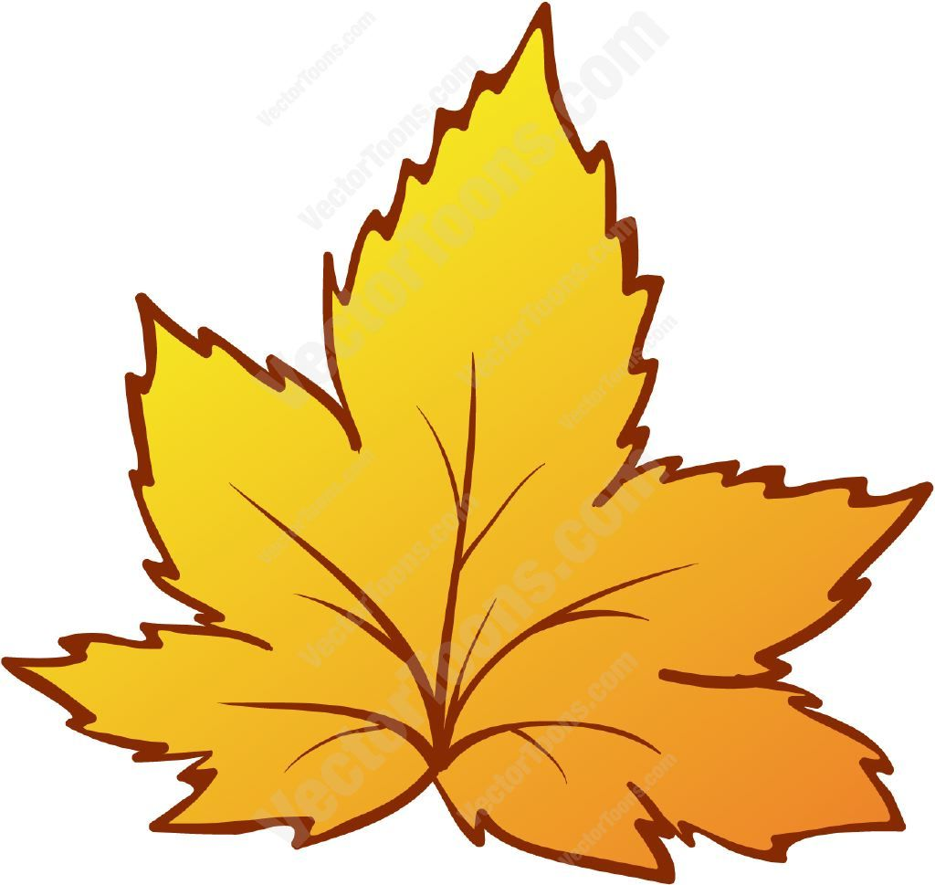fall leaves cartoons images pictures nearpics success rh pinterest com cartoon leaves images cartoon leaves black and white
