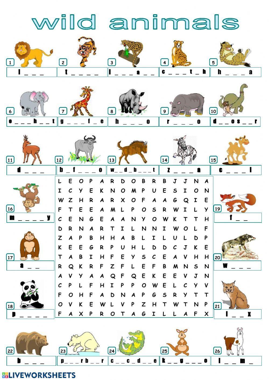Find the animals! Interactive worksheet แบบฝึกหัด