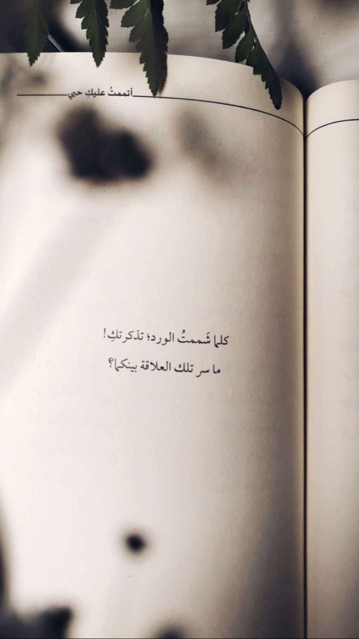 Pin By Mi On Quotes Book Quotes Quotes Arabic Quotes