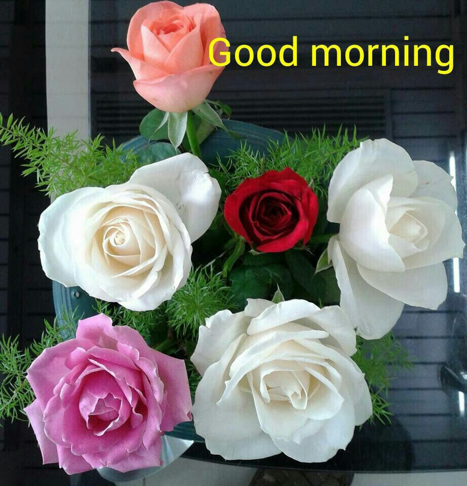 messagenew year messages gm good morning images flowers good morning picture g morning good morning world