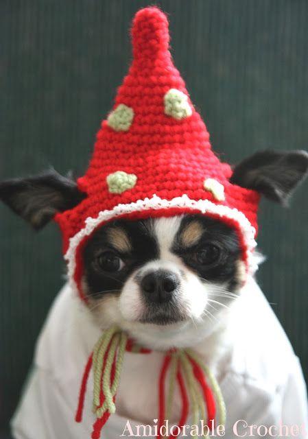 Crochet Dog Hat Pattern Ideas Best Collection Pinterest Dog