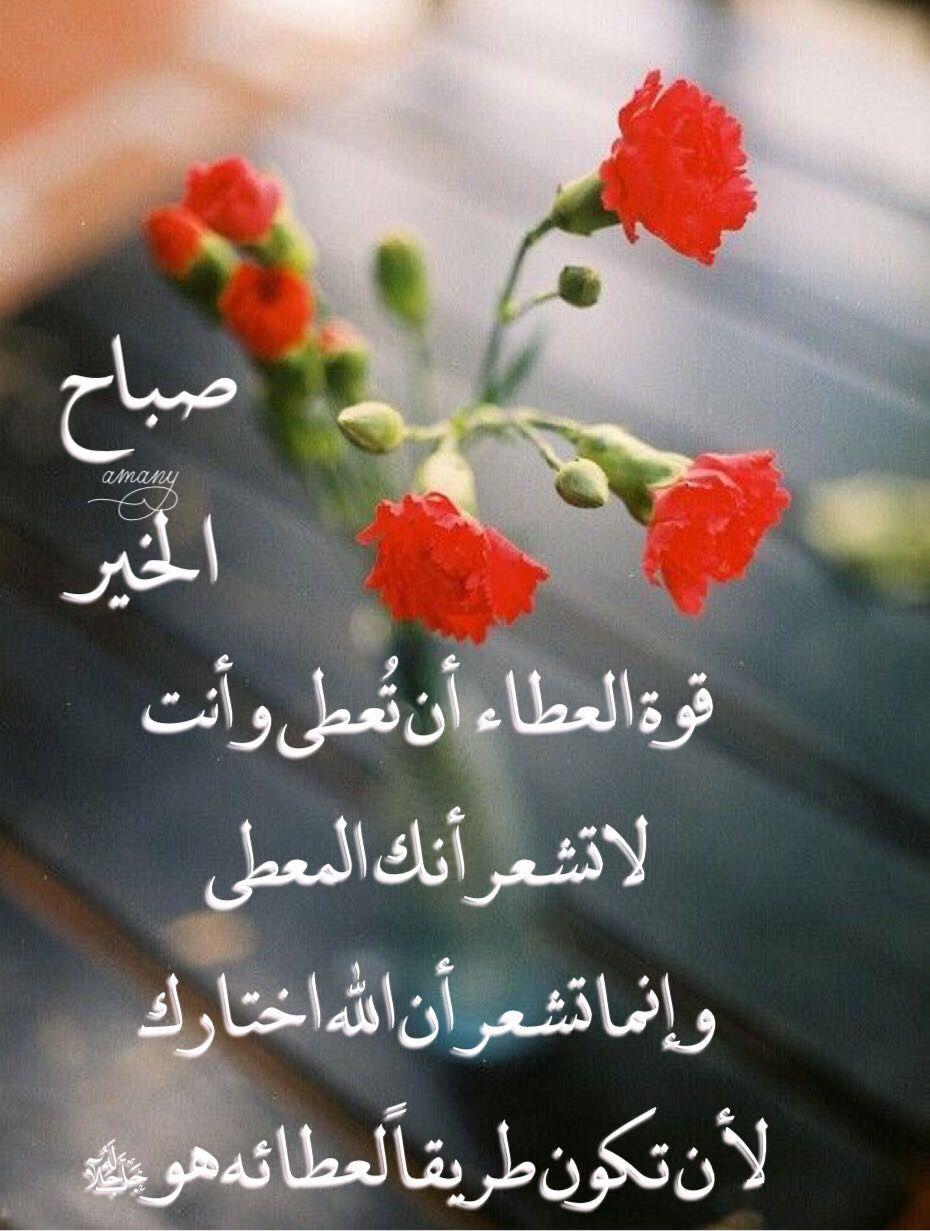 صباح الخير صباح النور صباح الايمان صباح الدعاء صباح التفاؤل صباح السعادة صباح الامل صباح الورد ص Morning Images Beautiful Morning Morning Quotes