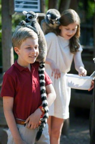 Prince Emmanuel and Crown Princess Elisabeth pictured with a lemur during a photoshoot of the Belgian Royal Family's vacation at animal park Pairi Daiza in Cambron-Casteau, Brugelette, 11 July 2015