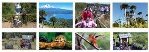 Guia de accesibilidad en areas silvestres protegidas de Chile