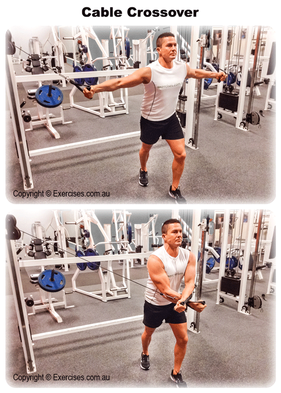 Cable Crossover (With images) Cable workout, Shoulder