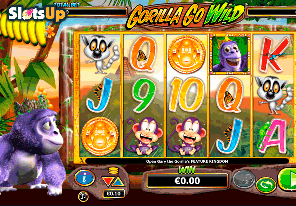 Go Wild Casino Flash Player