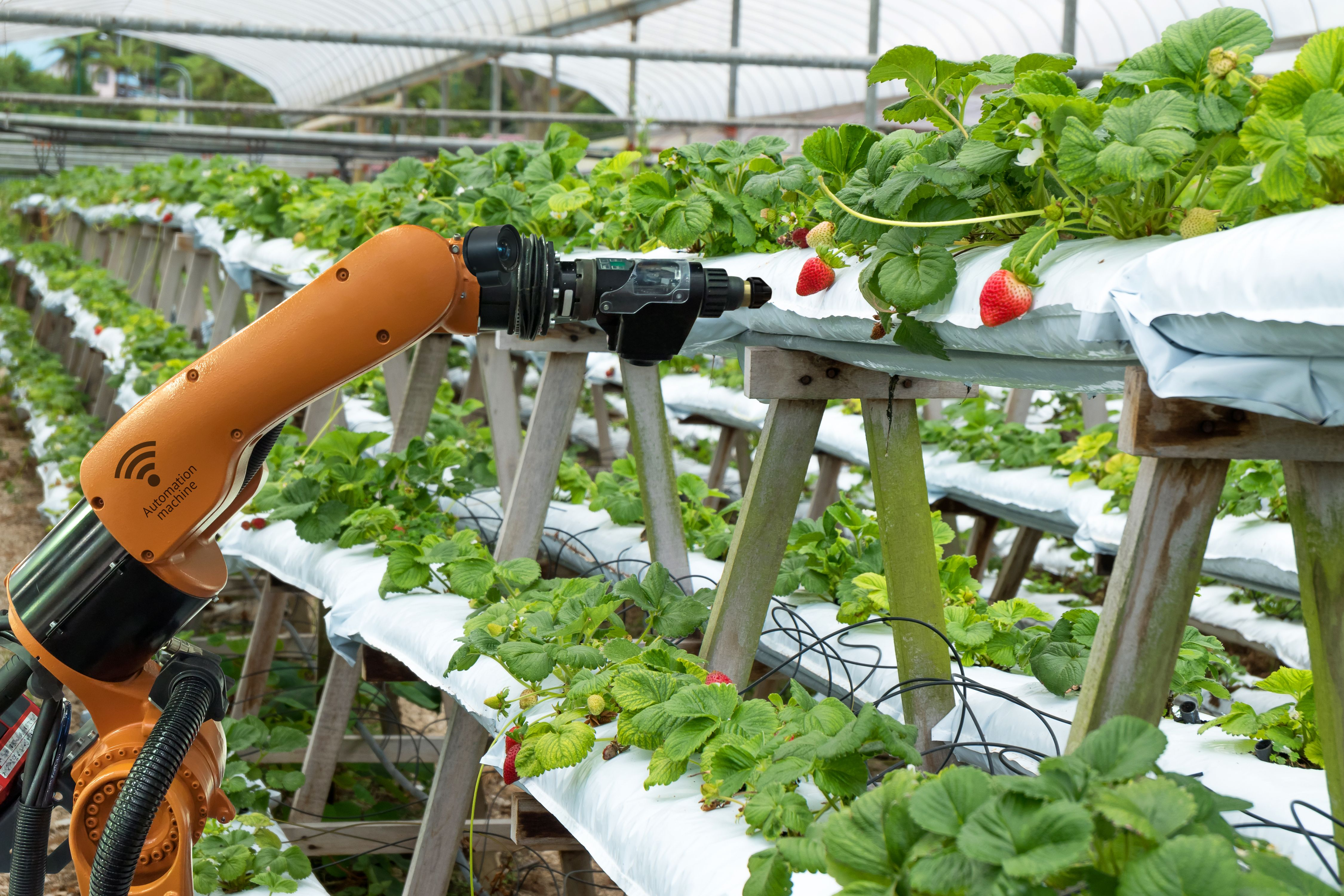 A small group of farm robotics startups is taking on