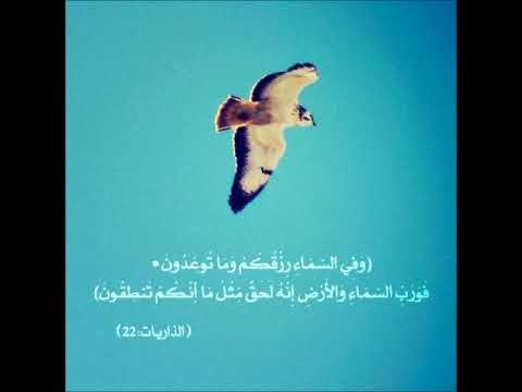 سورة الذاريات عبدالودود حنيف تلاوه جميله Quran Top Videos Youtube Videos Watch Video