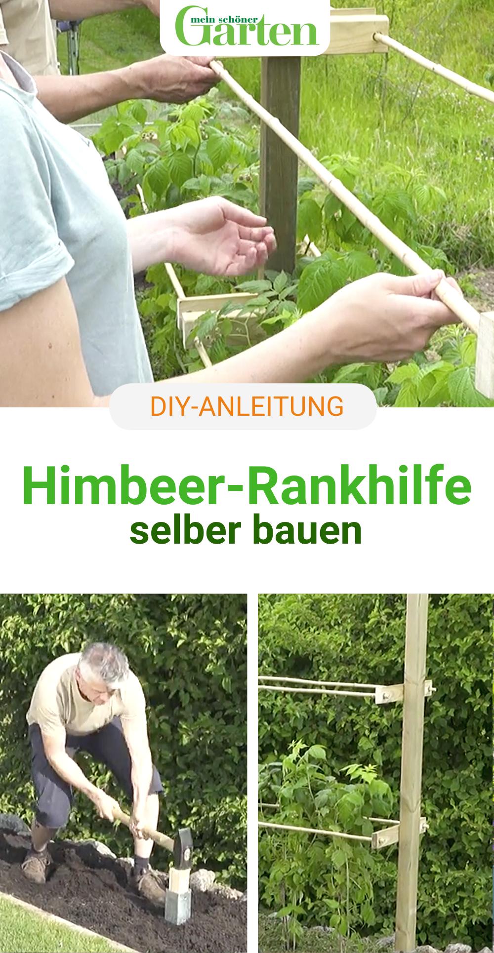 DIY: Himbeerspalier selber bauen