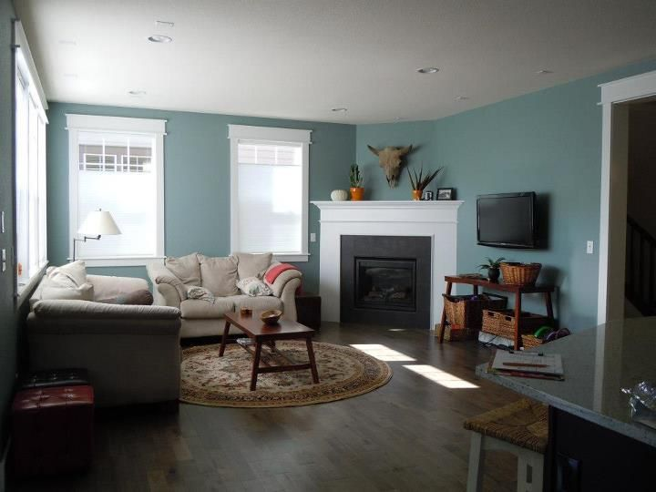 Blue Color Living Room Collection Extraordinary Design Review