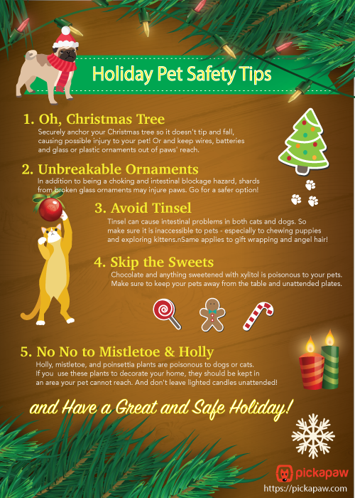 Little Gift From Us Pet Safety Infographic