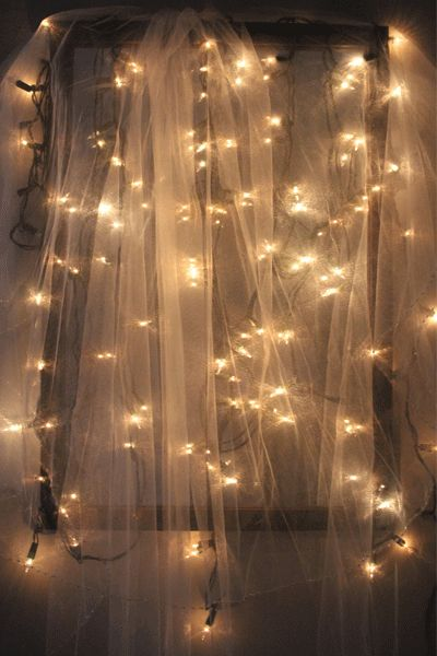 fairy lights netting