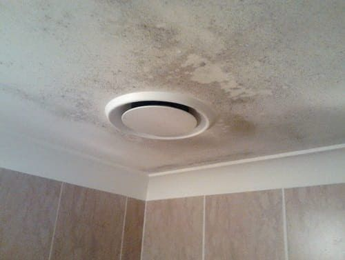 Mold Removal Bathroom Ceiling Cleaning ideas Pinterest