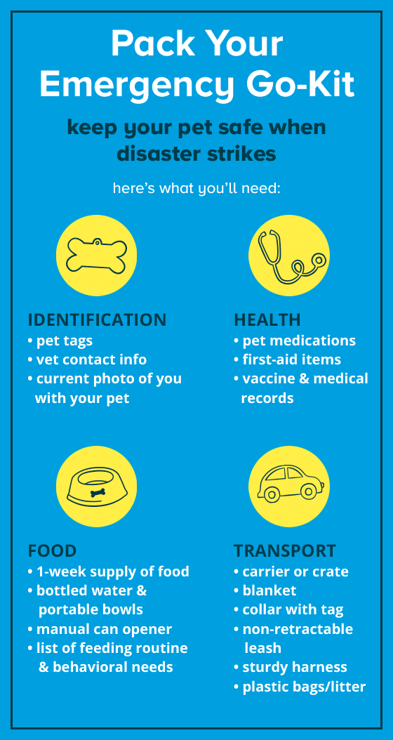 It S National Pet Preparedness Month Say That 5 Times Fast No One Ever Wants An Emergency But Being Prepared Ahead O Pet Emergency Pet Medications Pets