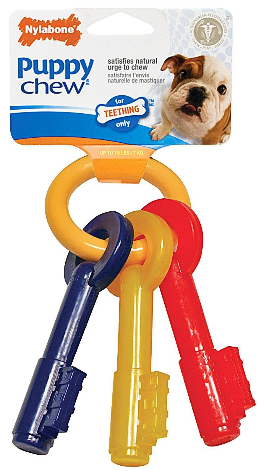 Nylabone Puppy Teething Keys Small Amazon Co Uk Pet Supplies