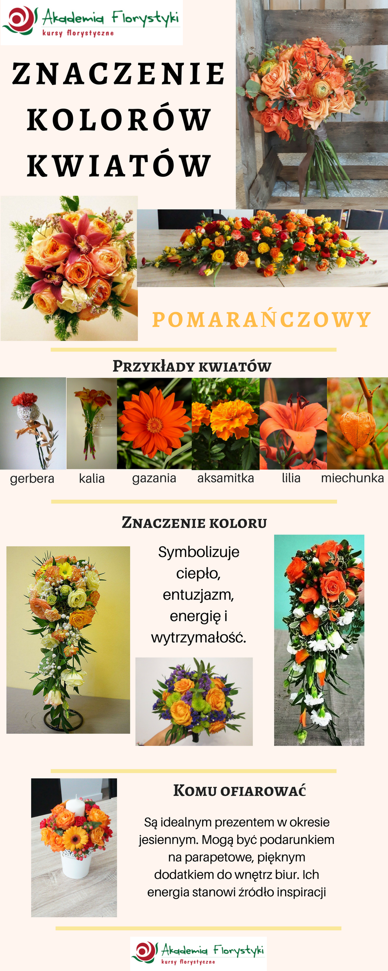 Znaczenie Kolorow Kwiatow Pomaranczowekwiaty Flowers