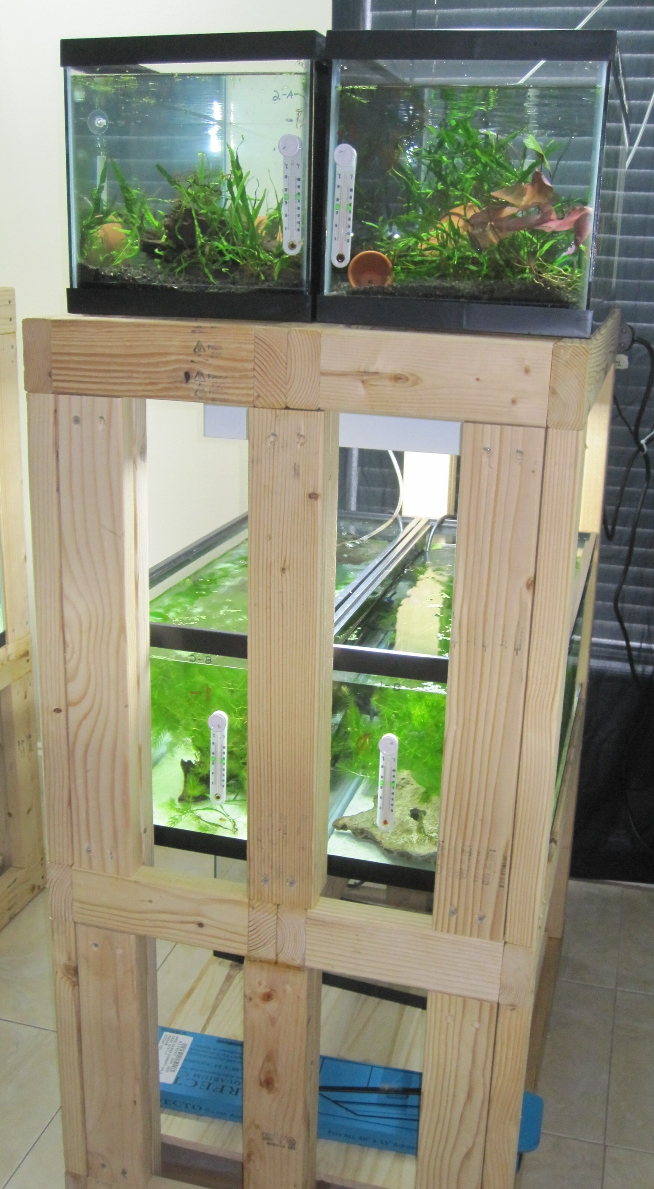 Diy Build An Aquarium Rack Will Also Need To Be Able Make It Support Diffe Sizes