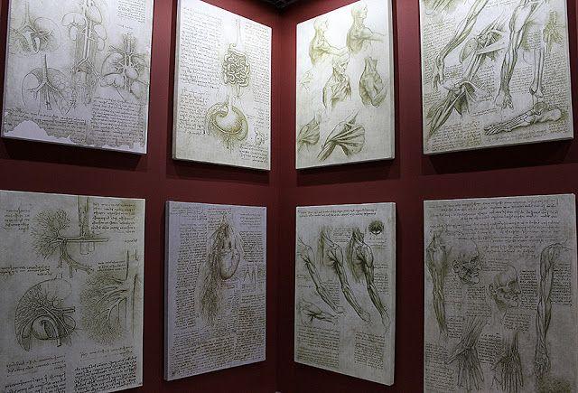 Выставка изобретений и искусства Леонардо да Винчи в Одессе