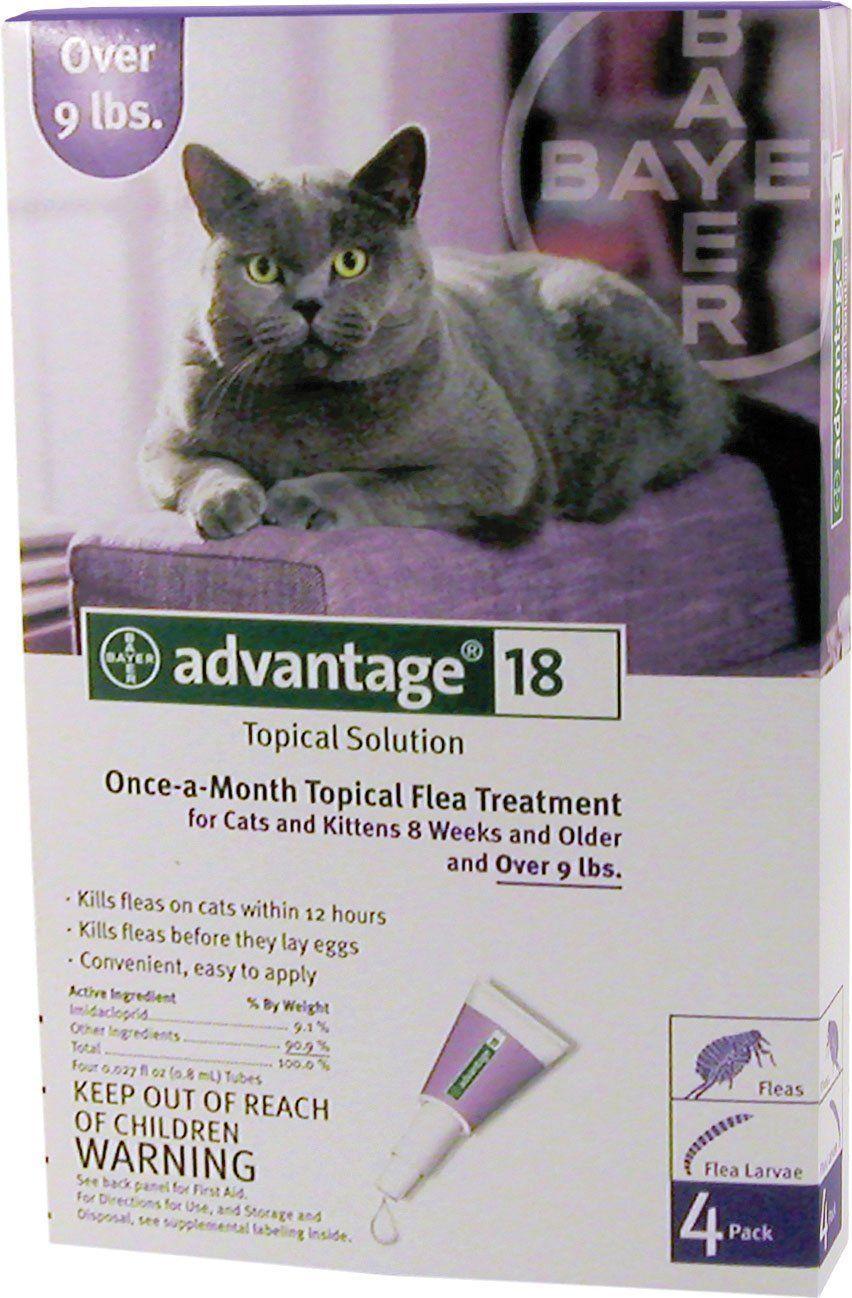 F C E Inc D Advantage 2 Cat Kitten Under 5lb 4pack Cats And Kittens Kittens Cats