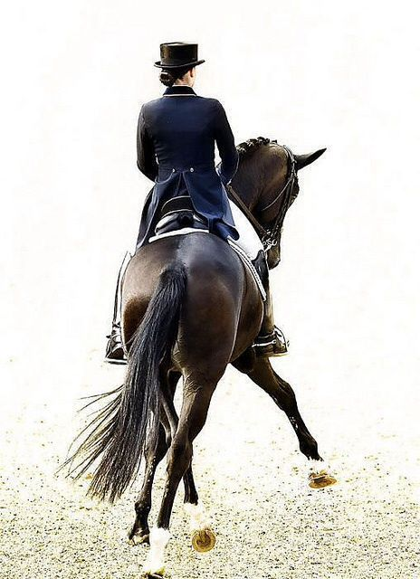 Love horses and riding!!