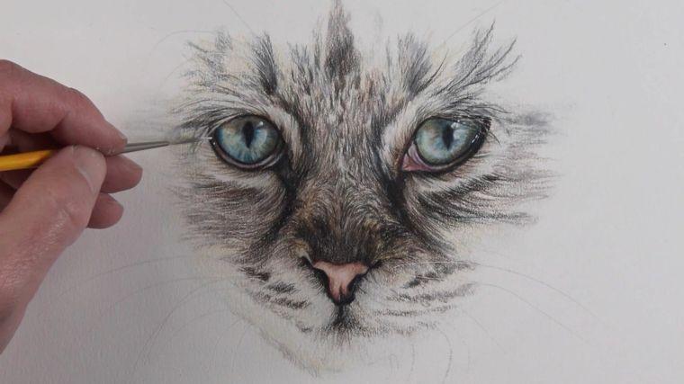 Schizzo Di Un Gatto Disegnare Con La Matita Disegni Belli Ma Facili Disegni A Matita Disegni A Matita Facili Disegni