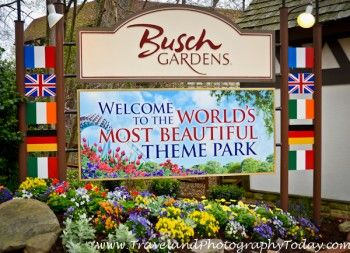 Win A Free Yard Makeover Courtesy Of Busch Gardens ...