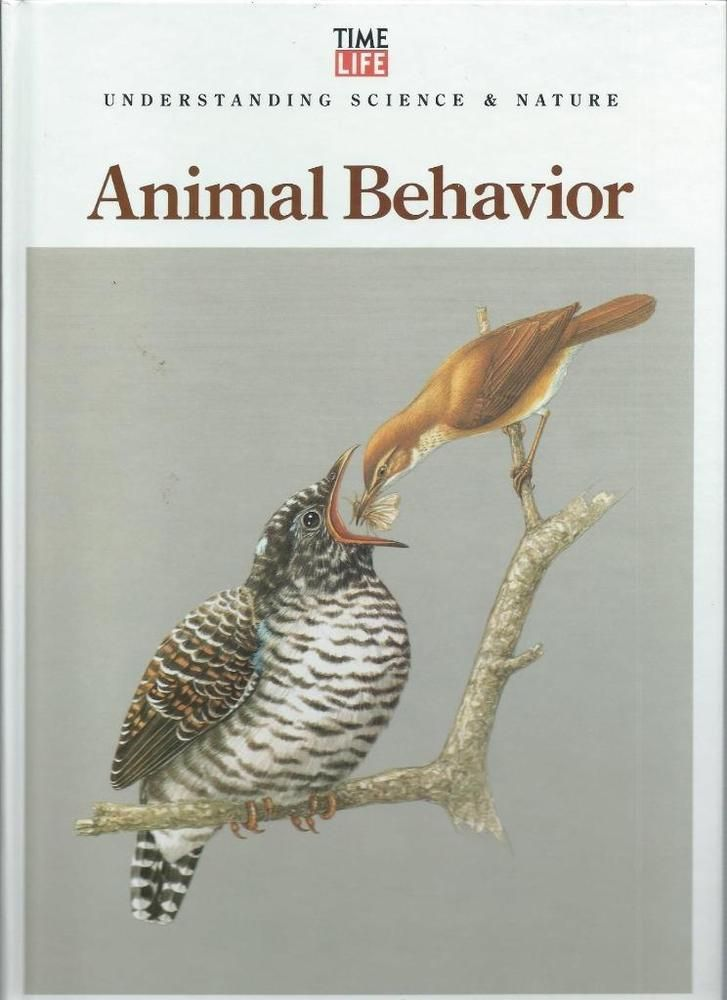 19++ Examples of learned behavior in animals ideas in 2021