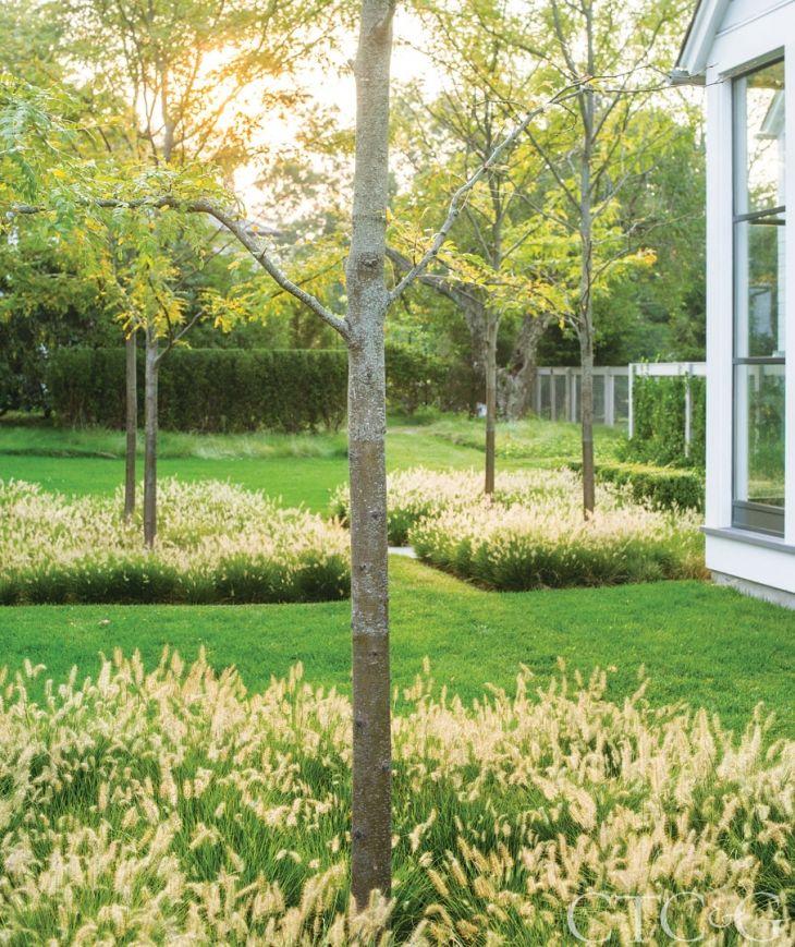 Tour a classical new england home with a contemporary