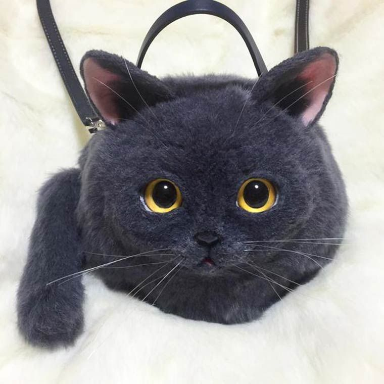 Here are the Cat Bags, some too realistic handbags shaped as cats! These adorable plush cats are indeed handbags, handcrafted by Japanese designer Pico. All u