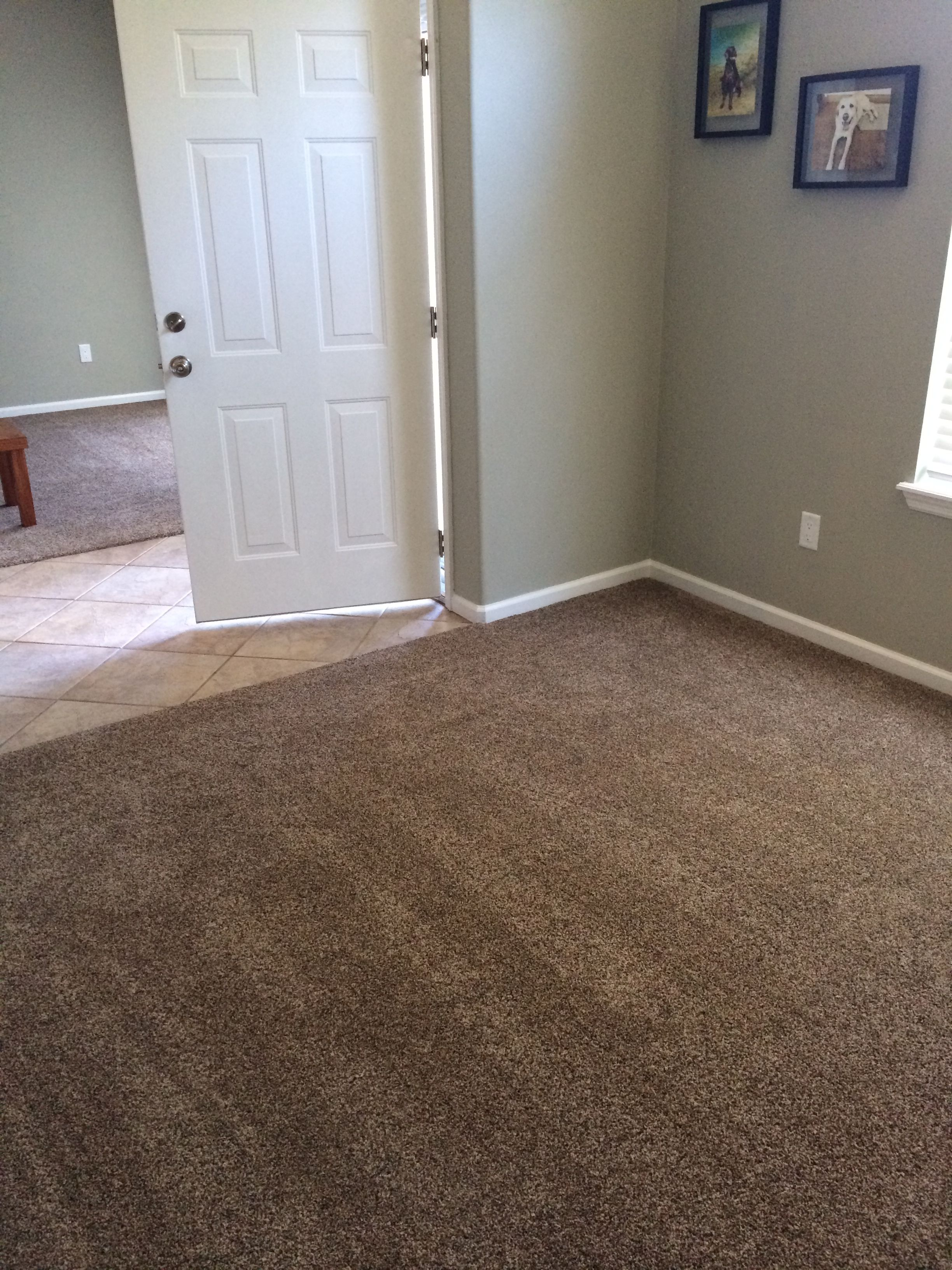 Best Carpet Color For Brown Sofa Deep Seat Dimensions Lowes The Mace Place Floors Pinterest Colors