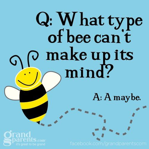 Pin By A1 Bee Specialists On For Grandkids Punny Jokes Funny Jokes For Kids Cheesy Jokes