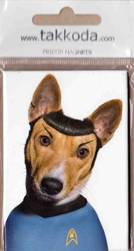 Magneetti Dr Space Perromania Pieni Postikorttikauppa Hauskat Koirakuvat Hauskat Elaimet