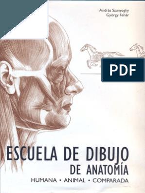 Curso De Dibujo Y Pintura 3 Fundamentos 2 Encuadre Composicion Y Encaje Libros De Dibujo Pdf Libros De Anatomia Libro De Dibujo