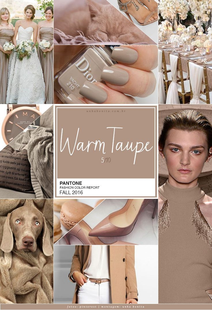 Pantone Fashion Color Report FALL 2016 | Pantone, Taupe and Winter ...