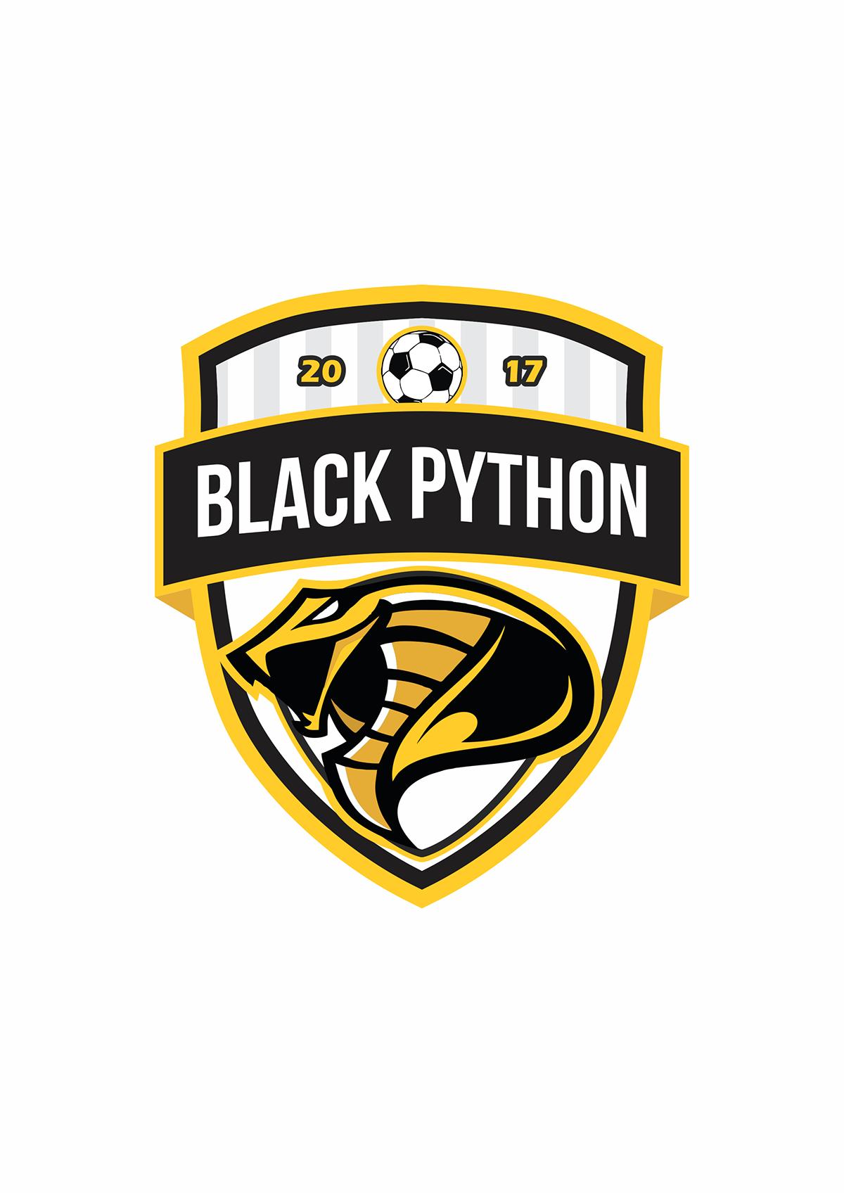 Pin On Fantasy Futsal Logo