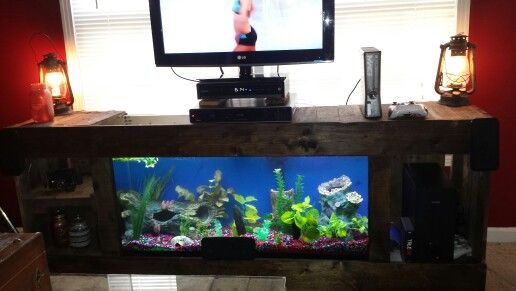 Diy Fish Tank Entertainment Center Diy Fish Tank Fish Tank