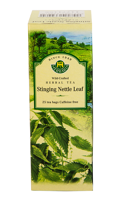 Stinging Nettle Leaf Herbaria Polar Bear Health & Water
