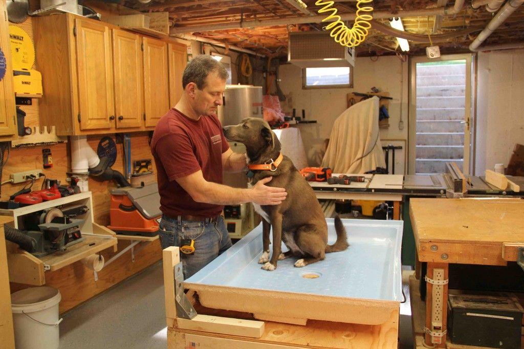 How To Build A Dog Wash Station Dog wash, Dog washing