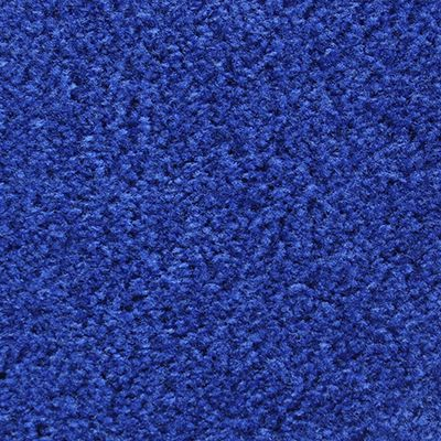 Best Royal Blue Carpets On Stairs Norton Safe Search 640 x 480