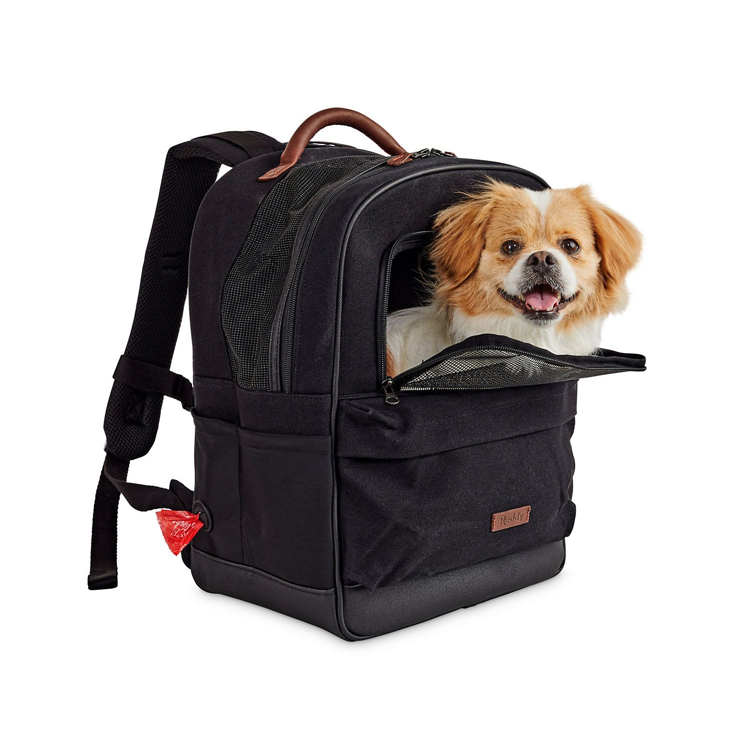 "Reddy Black Cotton Canvas Pet Carrier Backpack, 16"" H x 13"